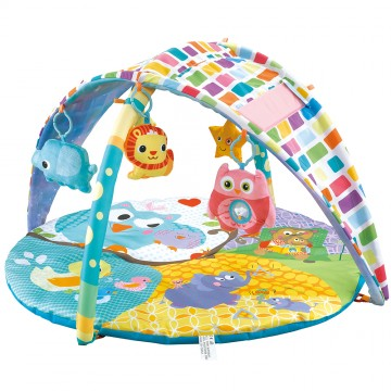 2 In 1 Sky Canopy Playgym