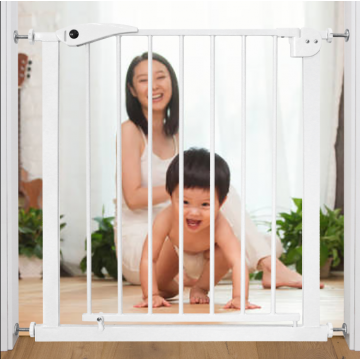 Smart System™ Auto 2 Way Swing Back Gate