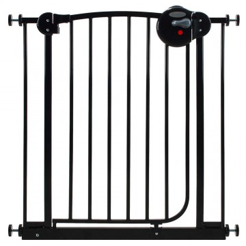 Smart System™ 2 Way Swing Back Gate