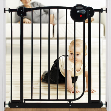 Smart System™ 2 Way Swing Back Gate